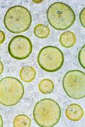Close up of lime on ice drift - stock photo