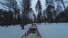 Finland, POV of husky dog team traversing Stock Footage