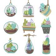 Succulents Icons Set - stock illustration