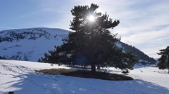 French Alps landscape and mountains in the snow at Ancelle village, Stock Footage