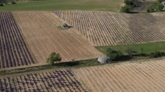 Lavender fields and old stone barns, Ferrassieres, Drome, France by drone - stock footage