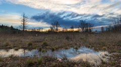 Time lapse of sunset in Foster Floodplain Natural Area in Portland OR 4k UHD Stock Footage