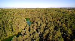 Aerial shot of the green forest in Antu Estonia Stock Footage