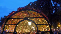 A gazeebo with lots of colorful lights and vines Stock Footage