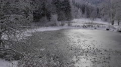 Snow covered fir trees in a winter forest with frozen pond, Chamrousse, Isere, Stock Footage