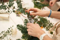 Creating a wonderful composition cotton, cones, fir, magical variety carnations Stock Photos