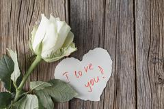 White rose with love message Stock Photos