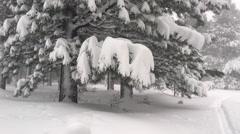 SKi tracks in snowstorm Stock Footage