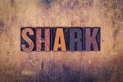 Shark Concept Wooden Letterpress Type Kuvituskuvat