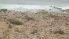 Ruggedly beautiful coastline scenery in Australia Stock Footage