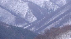 Dense snowfall over the mountains with dense forests of deciduous 699 Stock Footage
