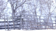 Heavy snow in the forest bordered by an old wooden fence 704 Stock Footage