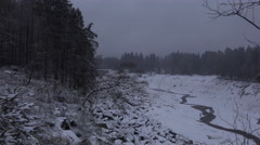 4k Oderteich lake winter forest Harz zoom in gnarly tree Stock Footage
