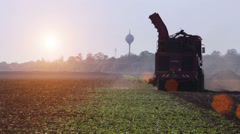Harvester during harvesting of sugar beets Stock Footage