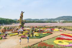 INCHEON, KOREA - OCTOBER 01, 2014: Incheon chrysanthemum flowers festival - stock photo