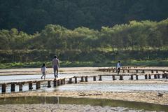 YEONGJU, KOREA - OCTOBER 15, 2014:  people on a single lane log bridge in Mus - stock photo