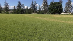 Across a wheat field towards the old town of Manosque, Provence, South of France Stock Footage