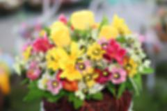 Bright and beautiful colors  plastic flowers blur background. Stock Photos