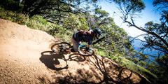 Mountain Bike Riders at Mt Buller - stock photo