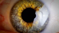 Extreme close up human eye iris - stock footage