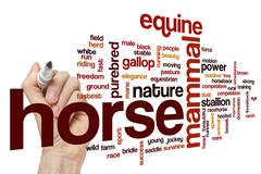 Horse word cloud concept Stock Illustration