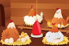 Chicken Hatching Eggs Stock Illustration