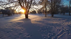 Aerial footage. Winter landscape, sunset. Low altitude flight. - stock footage