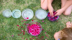 Caucasian children making flower scented water Stock Footage