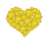 Yellow Yarrow Flowers Forming in Heart Shape - stock illustration