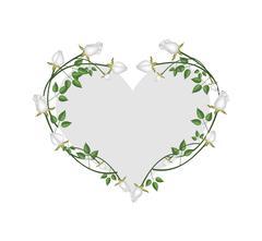 White Roses Flowers in A Heart Shape - stock illustration