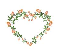 Stock Illustration of Beautiful Orange Roses Flowers in Heart Shape