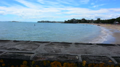 Landscape of Rangitoto Island Auckland New Zealand - stock footage