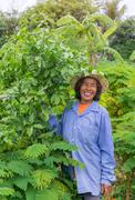 Senior farmer woman in the vegetable garden Stock Photos