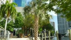Miami River walk trail Stock Footage