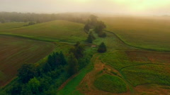 Lush rural landscape disappears into dense ground fog, aerial view. Stock Footage
