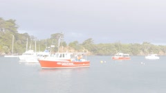 Fishing boats and pleasure craft in quiet bay - stock footage