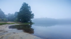 4k timelapse of morning on foggy lake shore - lake at autumn Stock Footage