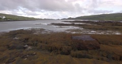 Aerial shot of a group of seals resting on rocks in a bay on the Isle of Harris Stock Footage