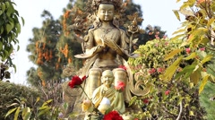 Two statues and the rose Stock Footage
