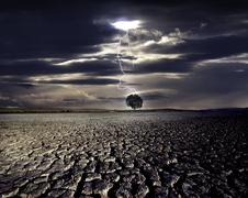 Cracked land and the lighning strikes on the distant tree Stock Photos