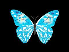 Butterfly wall sticker Stock Photos