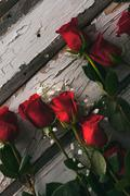 Stock Photo of Valentine: Red Roses On Weathered Painted Background