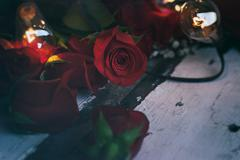 Stock Photo of Valentine: Moody Close Up of Rosebud With Retro Lights