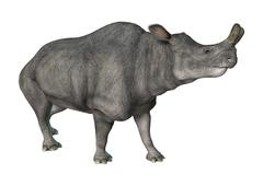 Brontotherium or Thunder Beast Piirros