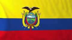 Flag of Ecuador waving in the wind. Stock Footage