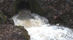 Water stream in creek after rain Stock Footage