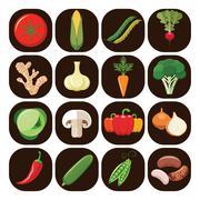 Set of different kinds of vegetables. - stock illustration