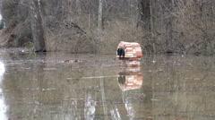Mailbox flood Stock Footage