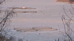 Rainbow trout farm, winter Stock Footage