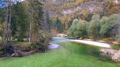 Sava Bohinjka river in Slovenia, Bohinj. Stock Footage